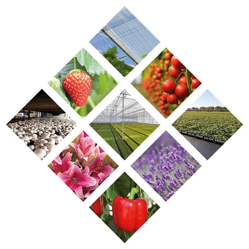 agrotextiel van topkwaliteit